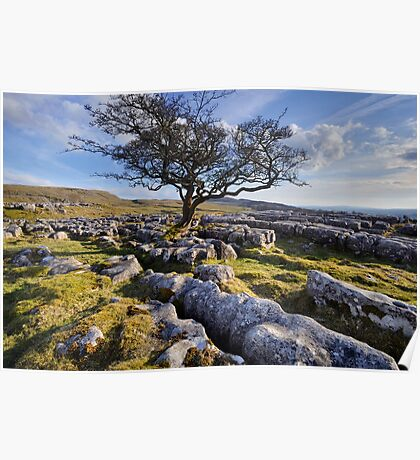 Above Langcliffe - The Yorkshire Dales Poster