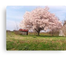 Countryside Beauty Canvas Print