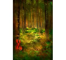 Forest Symphony..... Photographic Print