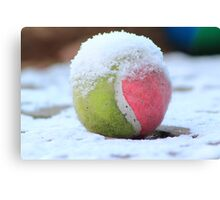 Winter Sports - Anyone for Tennis Canvas Print
