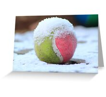 Winter Sports - Anyone for Tennis Greeting Card