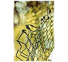 Forced Fence Poster
