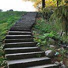 Stone Steps by Sheri Nye