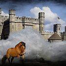 The Horse Runs Free by Sandra Cockayne