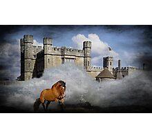 The Horse Runs Free Photographic Print