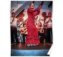 The Joy of Flamenco Poster