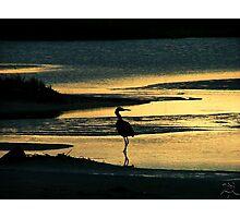 Evening Solitude Photographic Print