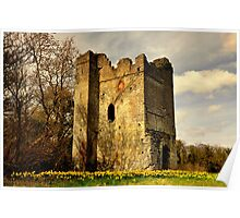Lanestown Castle. Poster