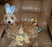 Happy Easter From Buddy by joycee