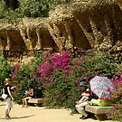 Parc Güell owls watching tourists by contradirony