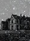 Snow ~ Pool Park Asylum by Josephine Pugh