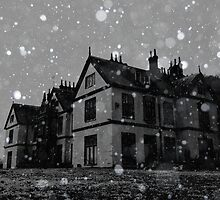 Snow ~ Pool Park Asylum by Josephine Pugh