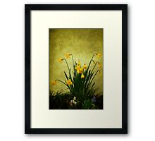 The Spring Collection Framed Print