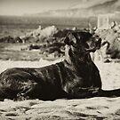 En la playa II by Constanza Caiceo