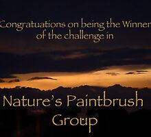 """Nature's Paintbrush Banner by Christine """"Xine"""" Segalas"""