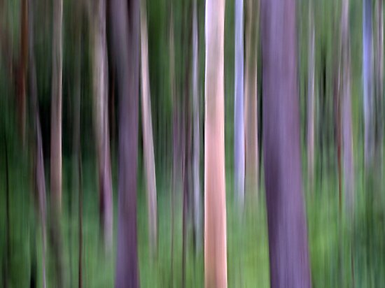 Purple Forest Impression by Kitsmumma