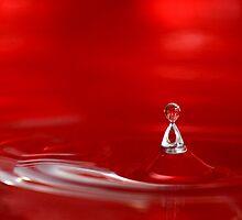 Splash by Al Mechler