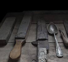 Antarctic Expedition Tools  by Coreena Vieth