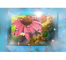 Flower shadowbox Photographic Print