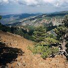 Cyprus landscape by ASSA