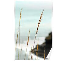 Coastal Paradise - Cape Meares, OR Poster