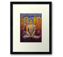 Buddha meditation Framed Print