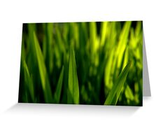 Grass is Greener? Greeting Card