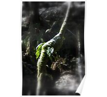 snowy Oregon ferns in trees 2 Poster