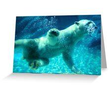NC Polar Bear Greeting Card