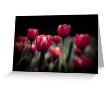 Lensbaby Tulips Greeting Card