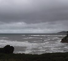 stormy weather near Penguin, Tasmania by gaylene