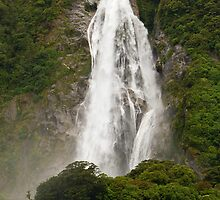 Bowen Falls, Milford Sound, New Zealand by Vickie Burt