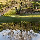 Reflections by Philip Alexander
