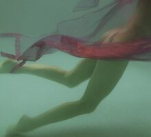 Beauty underwater by Nada  Pantle