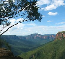 Grose Valley from Evans Lookout by Michael Vickery