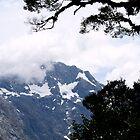 landscapes #209, framed peak by stickelsimages