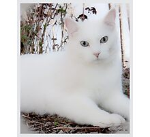 Casper Maxwell Snow Photographic Print