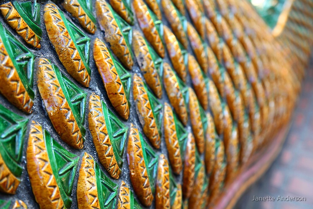 Dragon scales by Janette Anderson