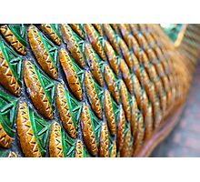 Dragon scales Photographic Print