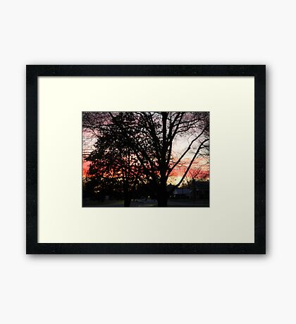 Sunset in my front yard Framed Print