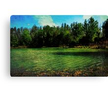 All is silent Canvas Print