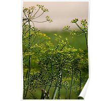 Beautiful Weeds Poster