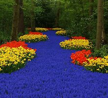 Flower path by Lindie