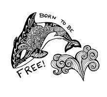 Born To Be Free Orca Zentangle by Meaghan Roberts