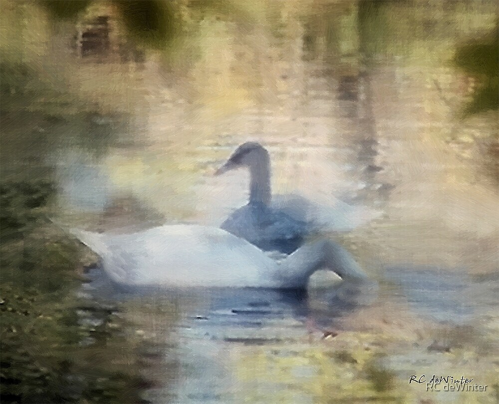 The Swans by RC deWinter