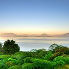 Lake Lago Ranco Chile by Daidalos