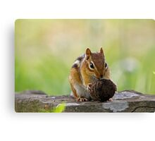 It's to big for me Canvas Print