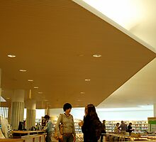 Rovaniemi Library by chamarbe