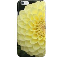 Perfect Yellow Dahlia iPhone Case/Skin