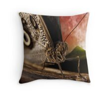 Wings and Melon - Washington DC, Smithsonian Throw Pillow